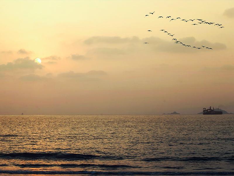 karwar-beach