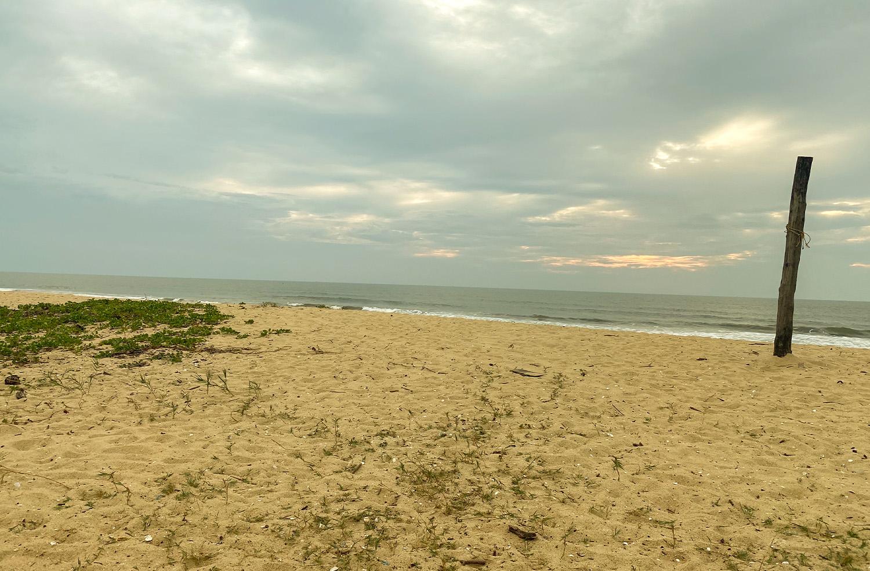 Tannirbhavi Beach in Mangalore